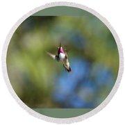 Calliope Hummingbird In Flight Round Beach Towel