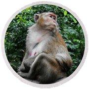 Cambodia Monkeys 2 Round Beach Towel