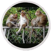 Cambodia Monkeys 7 Round Beach Towel
