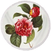 Camellia, 1833 Round Beach Towel