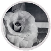 Camellia Back And White Round Beach Towel
