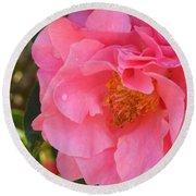 Camellias Of The South Round Beach Towel