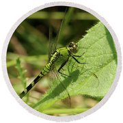 Cameo Green Dragonfly Round Beach Towel
