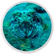 Camo Cuttlefish Round Beach Towel