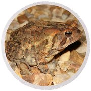 Camouflage Toad Round Beach Towel