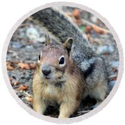 Campground Chipmunk Round Beach Towel