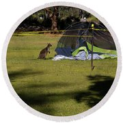 Camping With Swamp Wallaby Round Beach Towel
