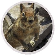 Can You Spare Me Some Food? Round Beach Towel