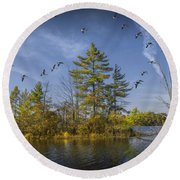 Canada Geese Flying By A Small Island On Hall Lake Round Beach Towel