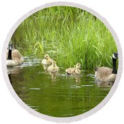Canada Goose Family 2 Round Beach Towel