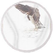 Canada Goose Fans Its Wings Round Beach Towel