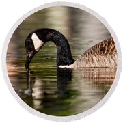 Canada Goose Reflections Round Beach Towel