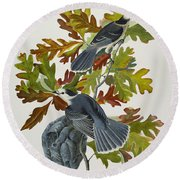 Canada Jay Round Beach Towel by John James Audubon