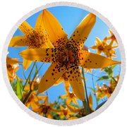 Canada Lily Round Beach Towel