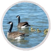 Canadian Geese Family Vacation Round Beach Towel