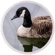 Canadian Goose At Rio Round Beach Towel