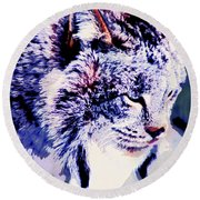 Canadian Lynx 1 Round Beach Towel