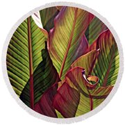 Canna Leaves 2   Round Beach Towel