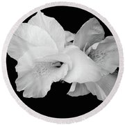 Canna Lily In Black And White Round Beach Towel