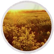 Canola Sunburst Round Beach Towel