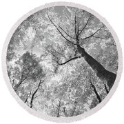 Canopy Round Beach Towel