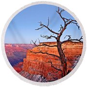 Canyon Tree Round Beach Towel