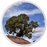 Canyonlands Tree Round Beach Towel