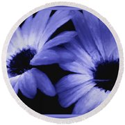 Captured In The Light Round Beach Towel