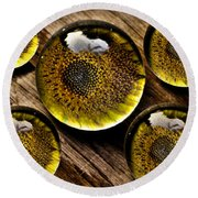 Captured Under Glass Series Group Two Round Beach Towel