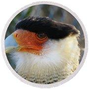 Caracara Bird Round Beach Towel
