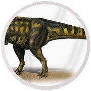 Carcharodontosaurus Iguidensis Round Beach Towel