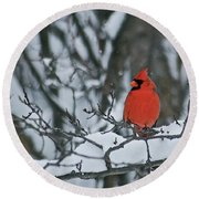 Cardinal And Snow Round Beach Towel