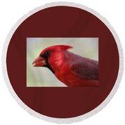 Cardinal Closeup D-bn2 Round Beach Towel