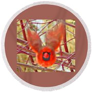 Cardinal In Flight Abstract Round Beach Towel