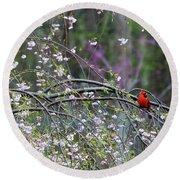 Cardinal In Flowering Tree Round Beach Towel