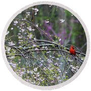 Cardinal In Flowering Tree Round Beach Towel