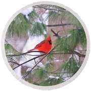 Cardinal In Winter Round Beach Towel