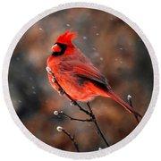 Cardinal On A Snowy Day Round Beach Towel