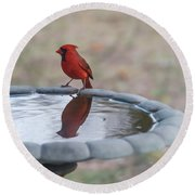 Cardinal Reflection Round Beach Towel