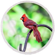 Cardinal Rule Round Beach Towel