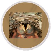 Cardinal Twins - Snugly Sleeping Round Beach Towel