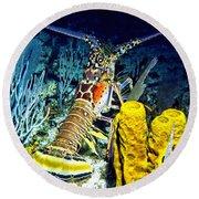 Caribbean Reef Lobster Round Beach Towel