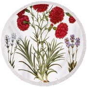 Carnation & Lavender, 1613 Round Beach Towel