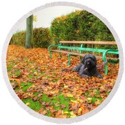Carpet Of Leaves Round Beach Towel
