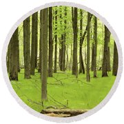Carpeted Forest Round Beach Towel