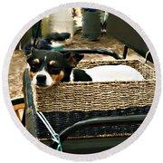 Carriage Dog Round Beach Towel