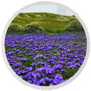 Carrizo Plain National Monument Wildflowers Round Beach Towel
