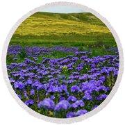 Carrizo Plain Wildflowers Round Beach Towel