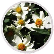 Cascade Of White Flowers Round Beach Towel