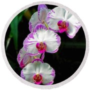 Cascading Orchid Beauties Round Beach Towel